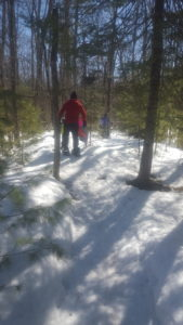 Snowshoe Guided Tour to Secret Sledding Spots!