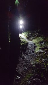 Night Outdoor Adventure Guided Tour